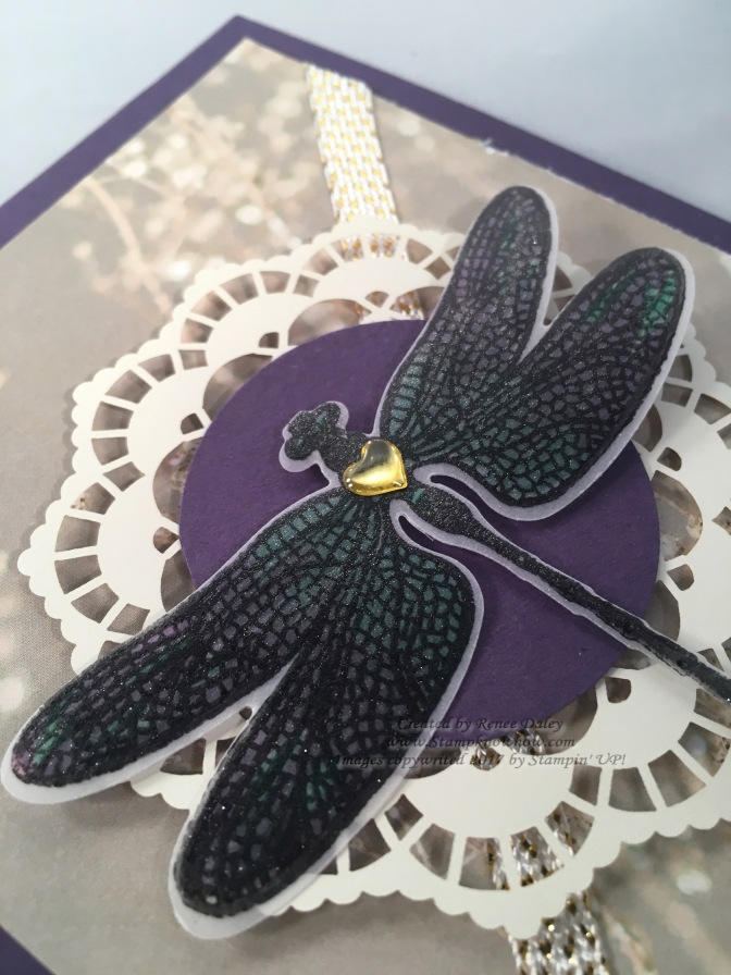 Close Up image of Dragonfly Dreams image