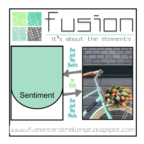 FUSION Tulips on a bike challenge